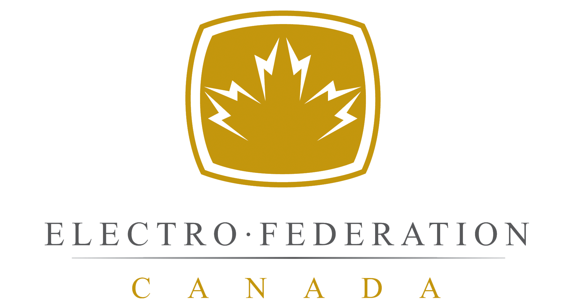 Électro Fédération